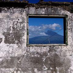 """фото """"picture window"""""""
