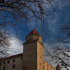 "photo ""Royal castle of Bratislava"""