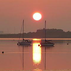 """фото """"Dawn"""""""