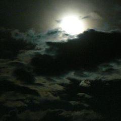 "фото ""Лунный свет"""