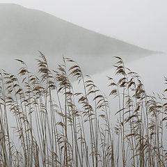 """фото """"Сказка тумана"""""""