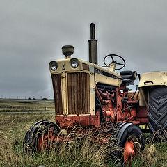 """фото """"old farmer"""""""