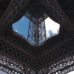 """фото """"Кобра Парижа..."""""""