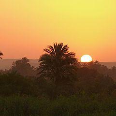 """фото """"Sunrise over the Nile"""""""
