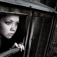 """фото """"I n Window..."""""""
