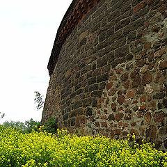 """фото """"У древней стены."""""""