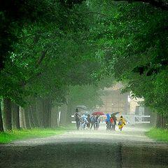 """photo """"rainy day in Belgium"""""""