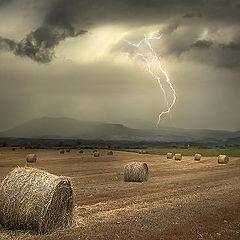 """фото """"Electric storm"""""""