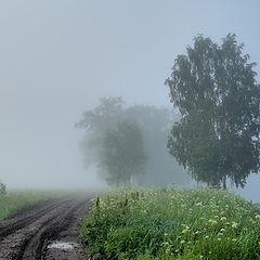 "фото ""Июльский туман"""