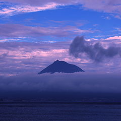 "фото ""purple haze"""