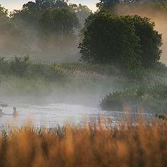 """photo """"Summer morning at small river"""""""