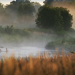 "фото ""Летнее утро у речки"""