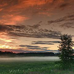 """photo """"Approach fog"""""""