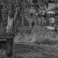 "photo ""Park near  the river"""