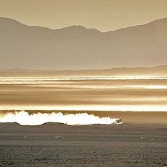 "фото ""Desert dust"""