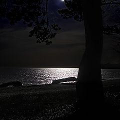 "photo ""Baltic Night"""