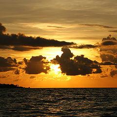 """album """"Maldives"""""""