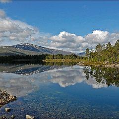 """фото """"Borgefjell NP"""""""
