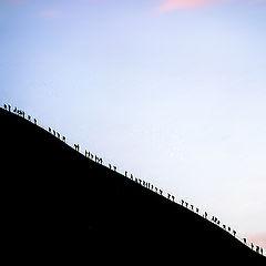 "photo ""the climb"""