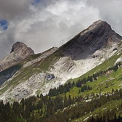 "фото ""Mountain Wilderness"""