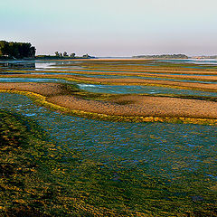 "photo ""Danub river near Vidin"""