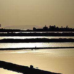 "фото ""tramonto sulle saline"""