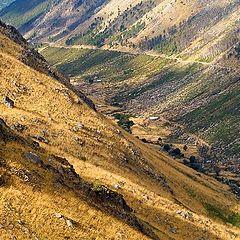 """фото """"Glacier Valley"""""""