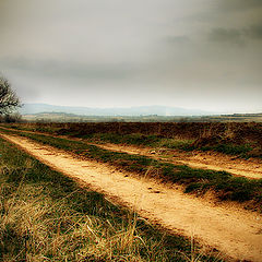 """фото """"The Road to Loneliness"""""""