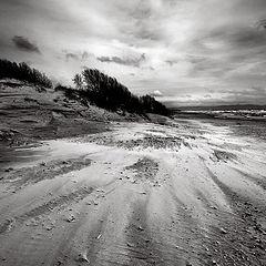 """фото """"Песчаные ветра"""""""