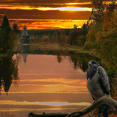 "фото ""Лесное озеро-2"""