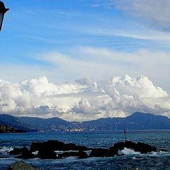 "фото ""Portofino"""