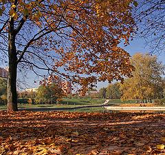 "photo ""Autumn in my town"""