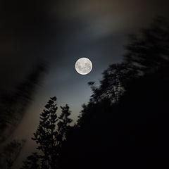 """photo """"Night Sky"""""""