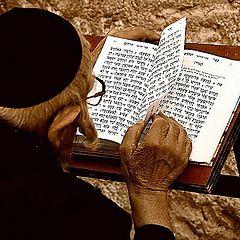 "photo ""Thumbing through the Book of life"""