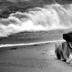 "фото ""spirit of the wind"""