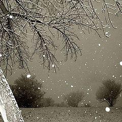 """фото """"winter"""""""