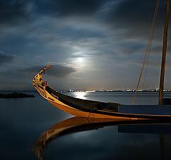 "фото ""At moonlight"""