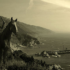 "photo ""Shipwrecked off the coast of America ..."""