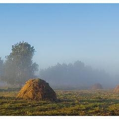 """фото """"светлое утро"""""""