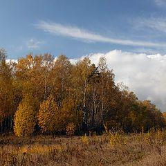 """фото """"Подмосковная осень..."""""""