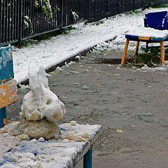 """фото """"Снежный заяц"""""""