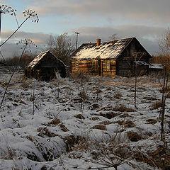 """фото """"Вот и первый снег."""""""