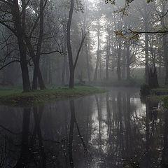 """фото """"... утренняя тишина"""""""