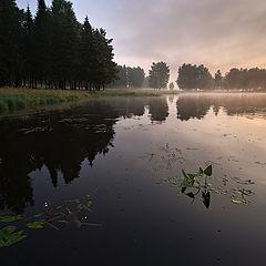"""фото """"Черноисточинск / 0172_0138"""""""