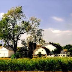 "photo ""The Perfect Farm"""