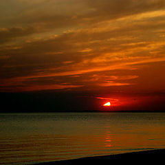 "фото ""Крокодил наше солнце проглотил"""