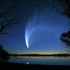 "фото ""McNaughts Comet 2007"""