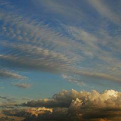 """фото """"вечернее небо"""""""