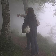 "photo ""In the fog"""