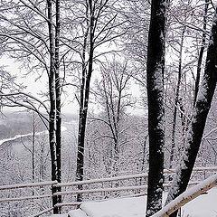 """фото """"В зимнем парке..."""""""